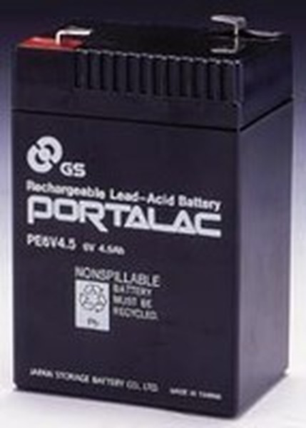 Portalac PE6V4 5 L GS Battery Emergency Lighting