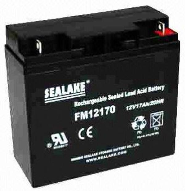 FM12170 Sealake Replacement